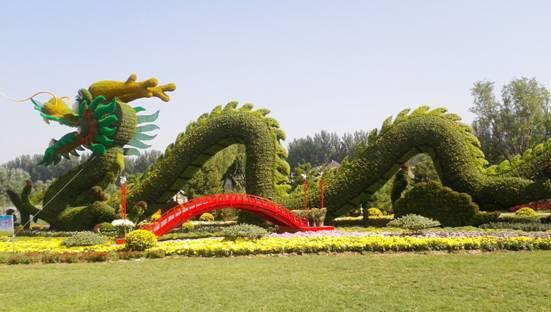 第十一届中国菊花展览会