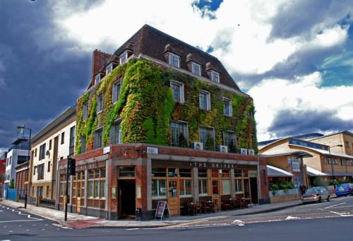 城市绿化景观发展新方向—建筑墙体绿化