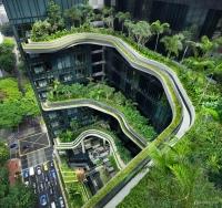 屋顶绿化的滞尘效应研究