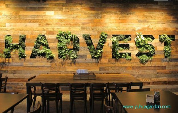 植物墙设计之纯logo植物墙