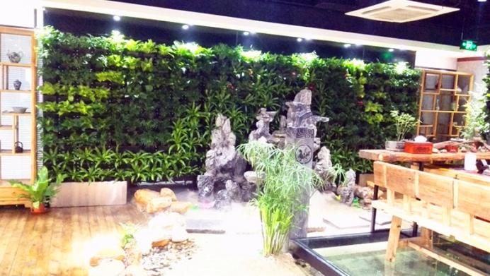 北方绿墙植物的选择