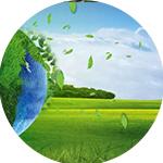 中环瑞景(北京)生态环境咨询有限公司
